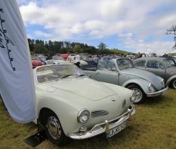 25. Sommerfest des VW Käfer Teams aus Göppingen